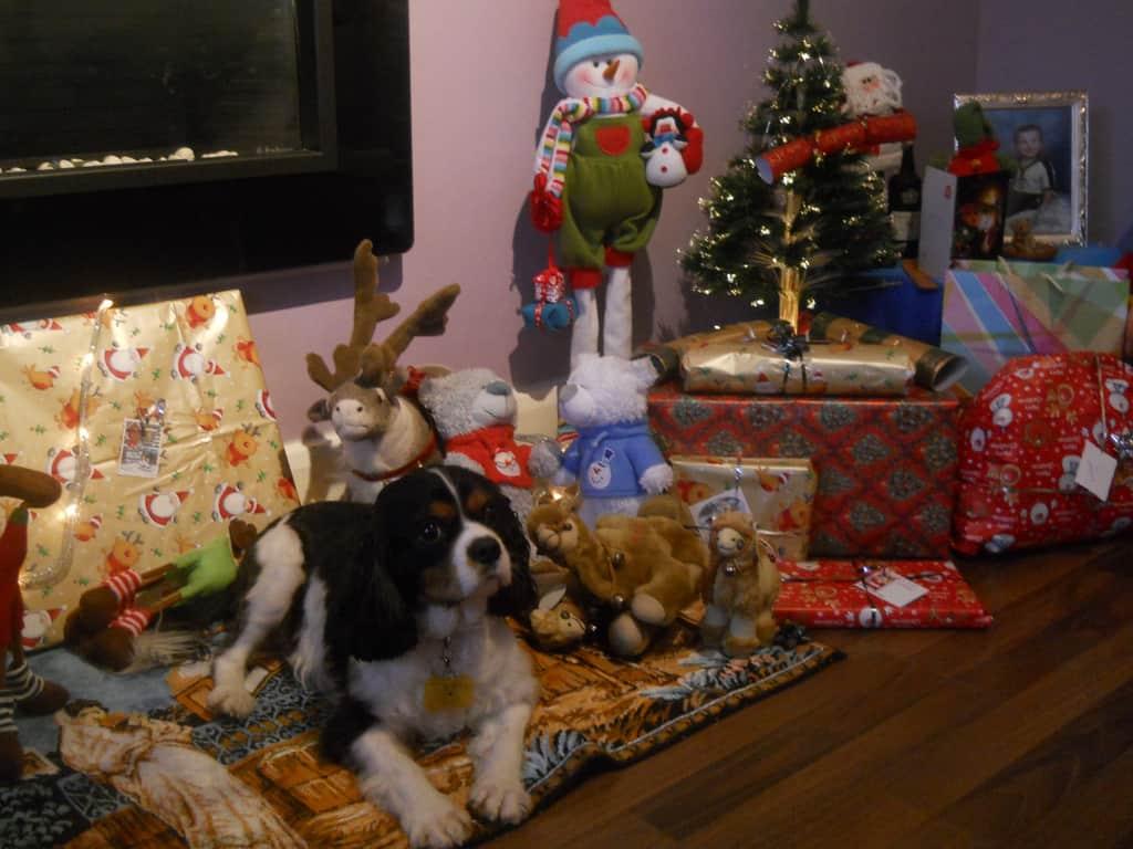 Christmas-pet-5