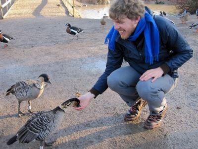 hand_feeding_your_pet_birds_-_3