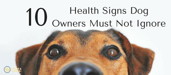 health signs dog