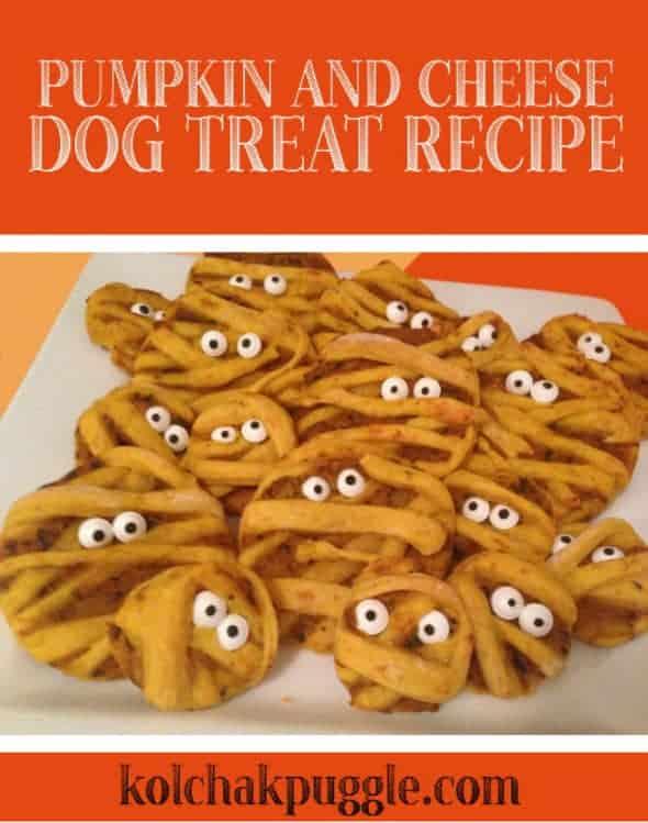 pet treats, Halloween