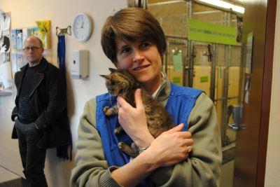 pet care, pet health, pets