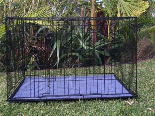 42' XL Cat Crate