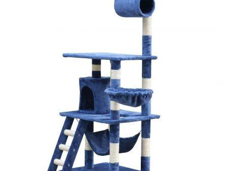 Blue Balmoral