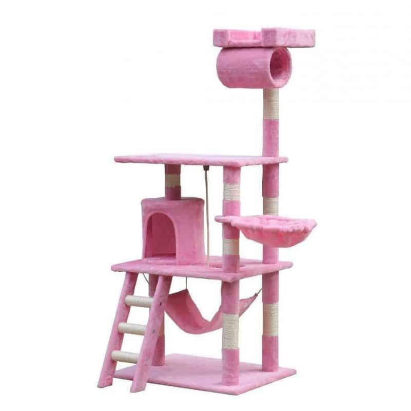 Pink Balmoral