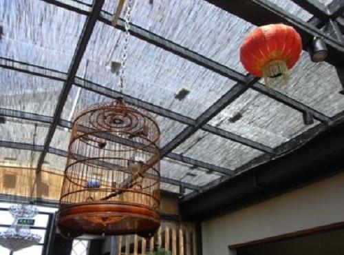 Hanging Bird Cage