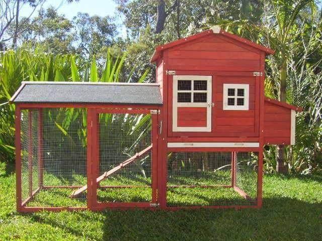 Red Cat Resort