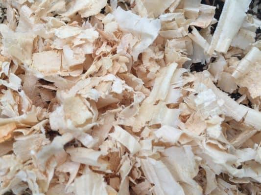 Untreated Pine Shavings